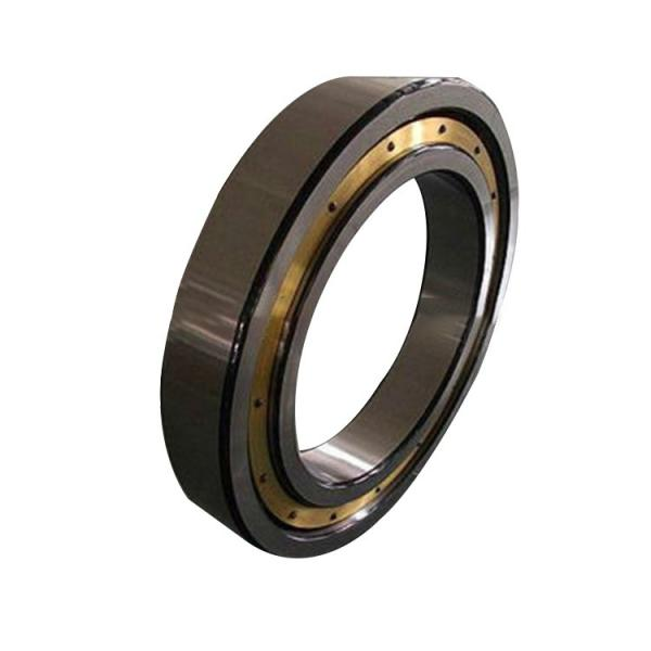 NUP2206 FBJ cylindrical roller bearings #1 image