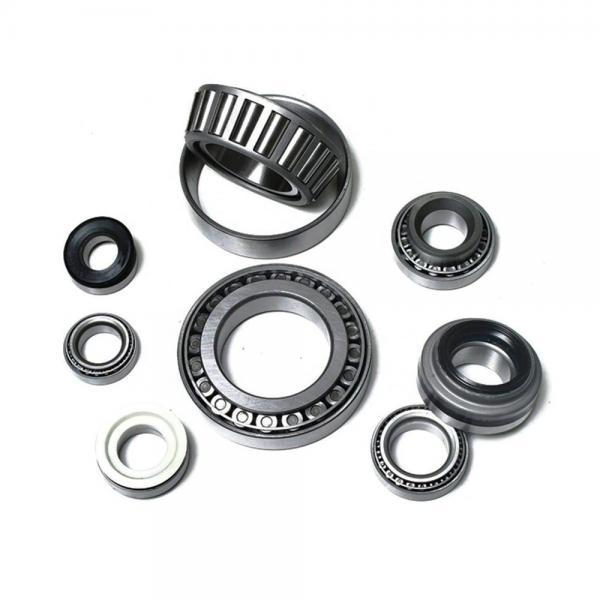 NUP219-E-TVP3 NKE cylindrical roller bearings #3 image